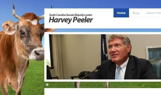 peeler steer