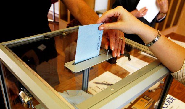 2010 voting