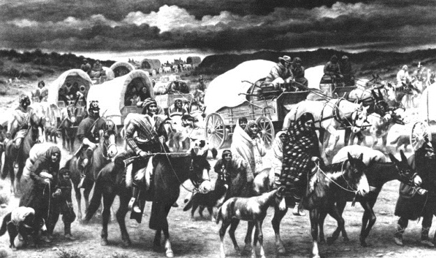 2 further Native American History A2a95329 B45d 4bda Bebb 2e5b5c092e49 in addition Andrew Jackson likewise Benjamin West furthermore Andrew Jackson Political Cartoons Trail Of Tears. on indian removal act symbol