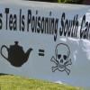 tea party rally protestors
